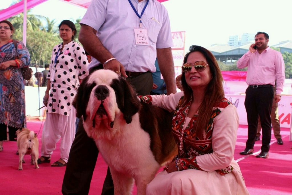 Glamdogs Event, Organised By Smita Thackeray And Mukti Foundation (1)